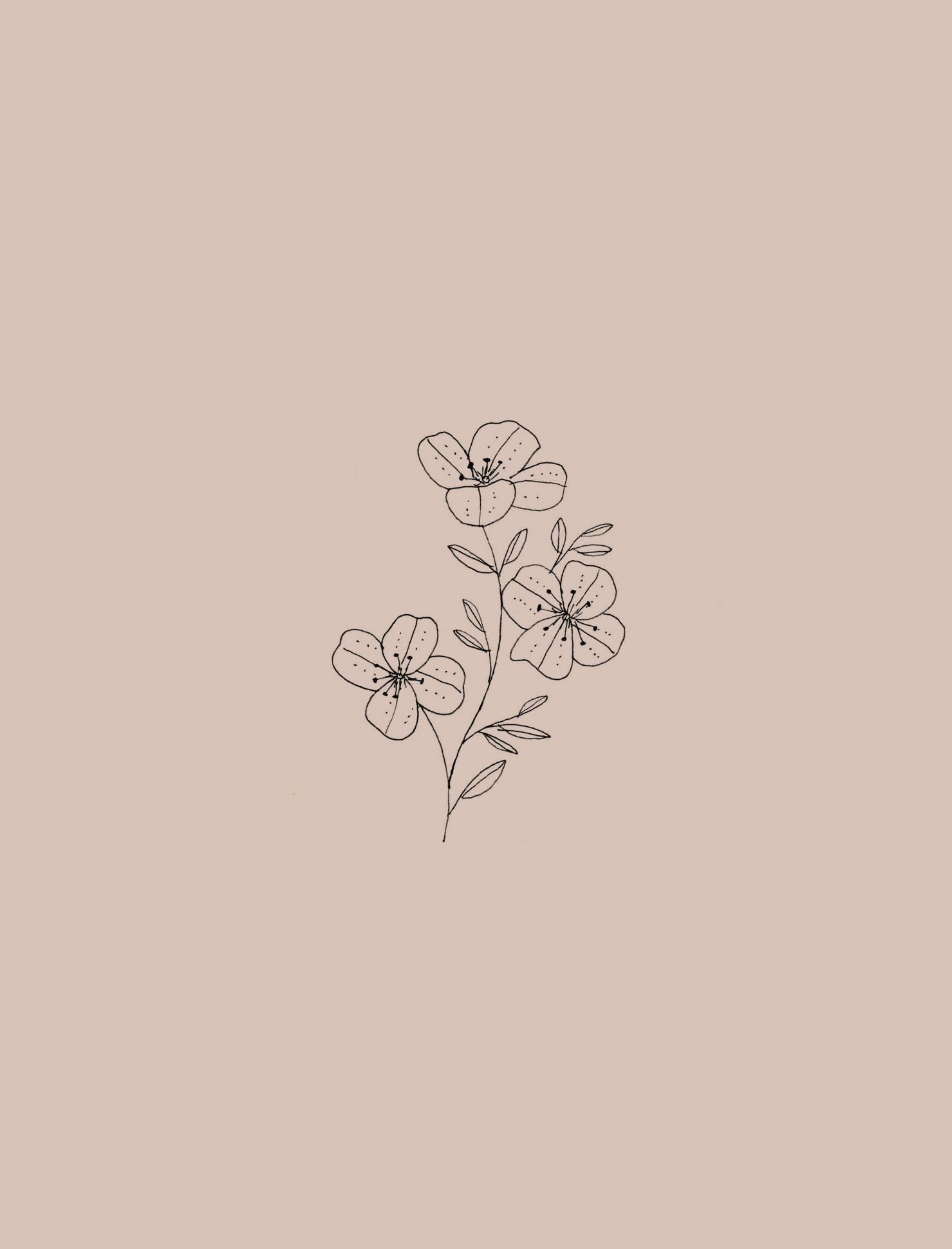 Botanical Illustration By Ryn Frank Www Rynfrank Co Uk