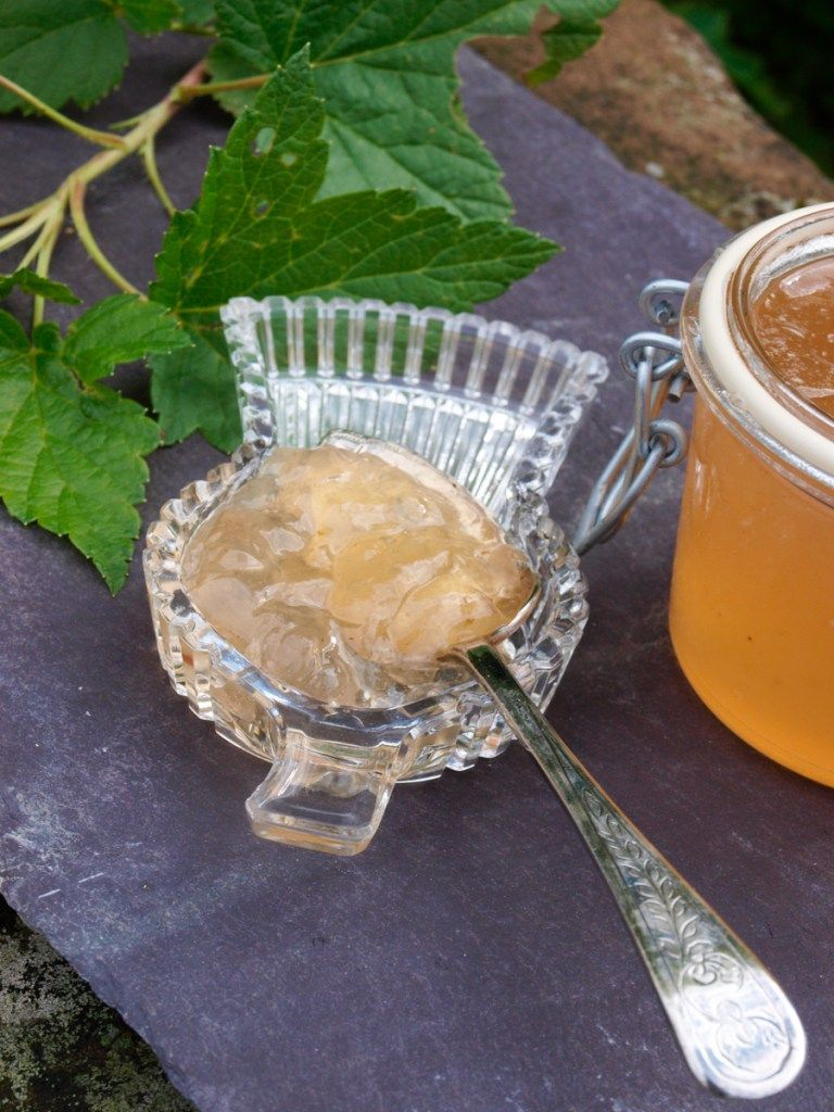 Grow your own and make White Currant Jelly Jam Currant