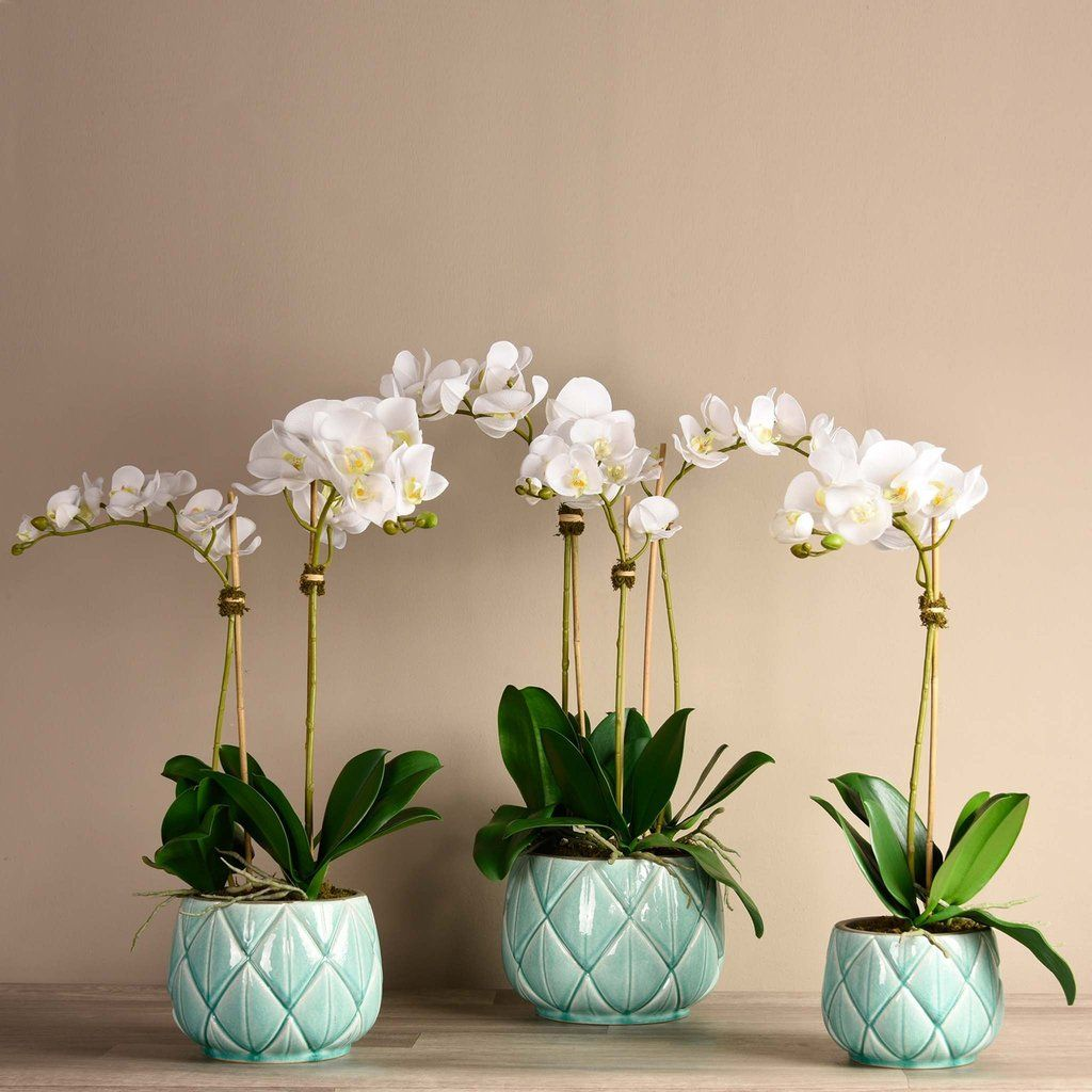 Artificial_Orchid_Arrangements , Artificial_Orchid