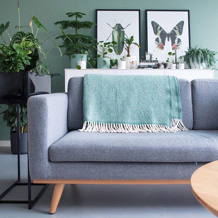 Sofa Company Nl Dog Online Australia 27 Vind Ik Leuks 1 Reacties Sofacompany Sofacompanynl Op