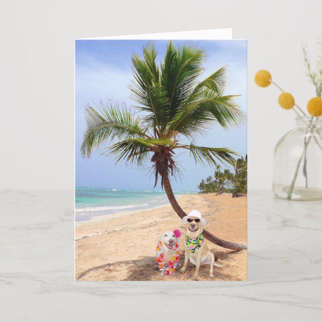Desert Island Beach: Stranded On Deserted Island Holiday Card #funny #humor