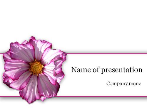 Purple flower Powerpoint template