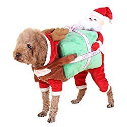 Funny Dog Costume Carrying Present Dog Costumes Funny Pet
