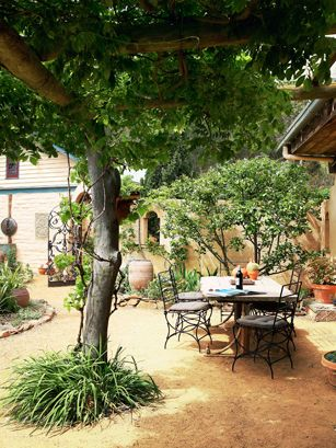 Mediterranean Garden Ideas | Gardens, Garden ideas and Side yards