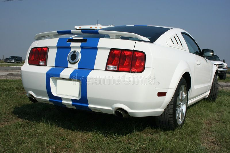 2007 Ford Mustang Gt Rear 2007 Ford Mustang Gt White With Blue Racing Stripes Sponsored Paid Ad Mustang In 2020 Ford Mustang Gt Mustang Gt 2007 Ford Mustang