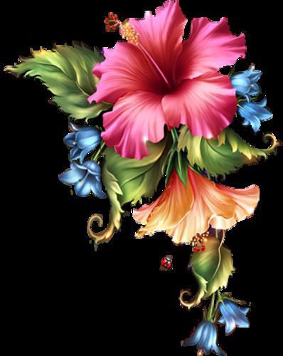 Çeşitli Dekoratif Çiçek ve Gül Resimleri, Rengarenk Karma Çiçek Görselleri -4 | NisanBoard Flatcast Radyo Destek Paylaşım Sitesi #schöneblumen