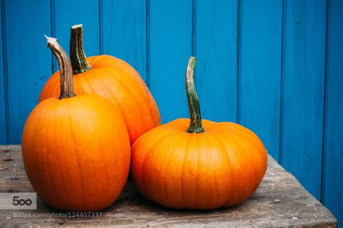 Halloween pumpkin by hellolemontreeimages  IFTTT 500px wood No People Pumpkin Single Object autumn blue colorful contrast decoration fall far