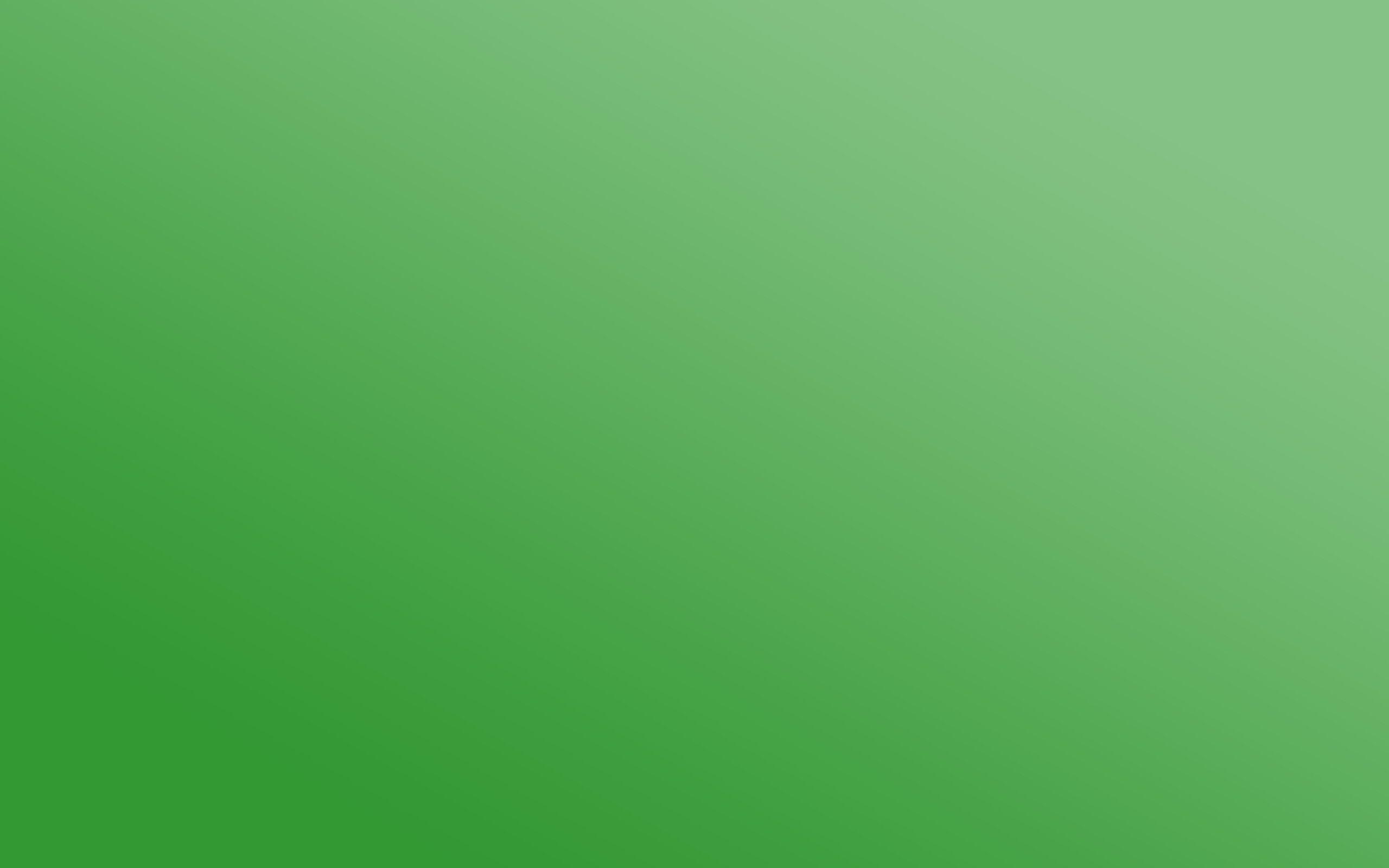 Tinta Unita Verde Carta Da Parati Istruzione Sfondi A Tinta
