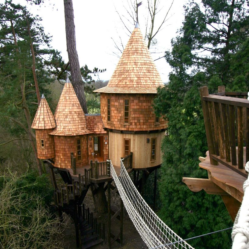 british family are living the highlife in treehouses by blue forest