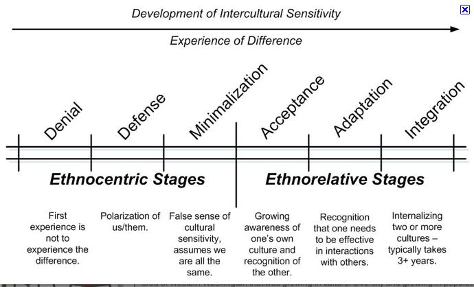 Development of intercultural sensitivity | Cultural ...