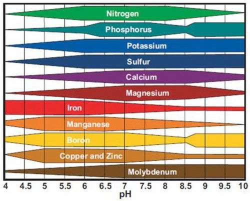 Nutrient Availability In Relation To Ph Graph  Outdoor Plants