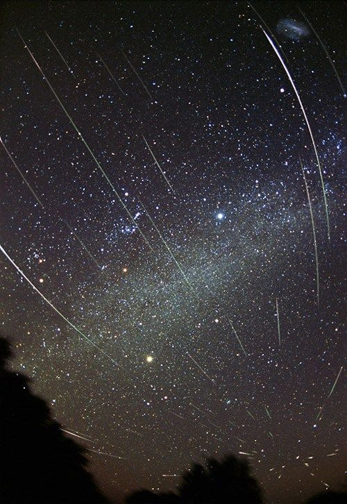 Space Shot of the Day Leonids Meteor Shower Leonid