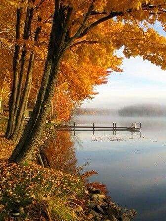 Peaceful Landscape Photography Autumn Scenery Autumn Scenes