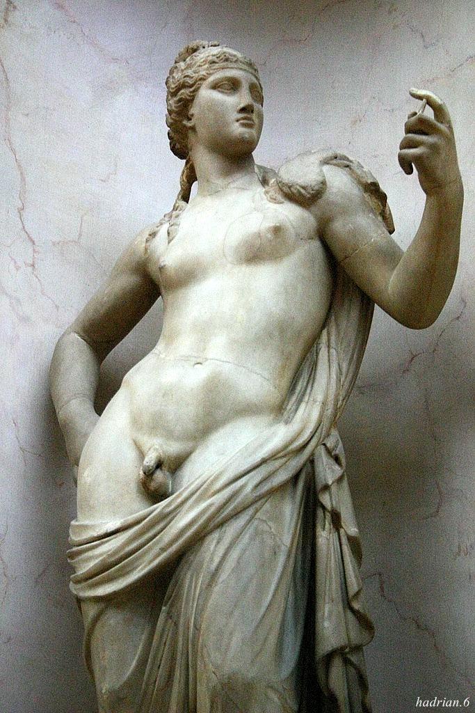 Hermaphrodite | Hag | Pinterest | Anatomy and Drawings
