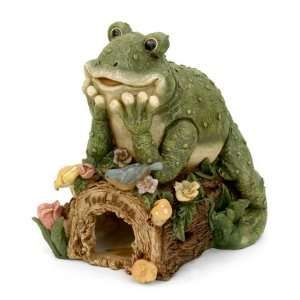Frog Kitchen Decor   PopScreen   Video Search, Bookmarking And Discovery  Engine