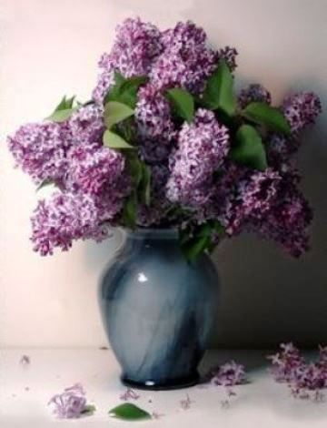 Popular On Pinterest Beautiful Lilac In A Vase Lilac Flowers Lilac Bouquet Purple Flowers