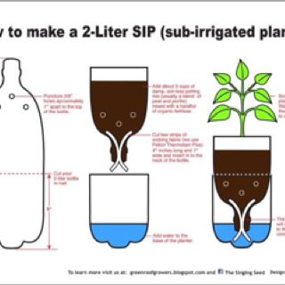 Cool idea for growing plants and recycling bottles