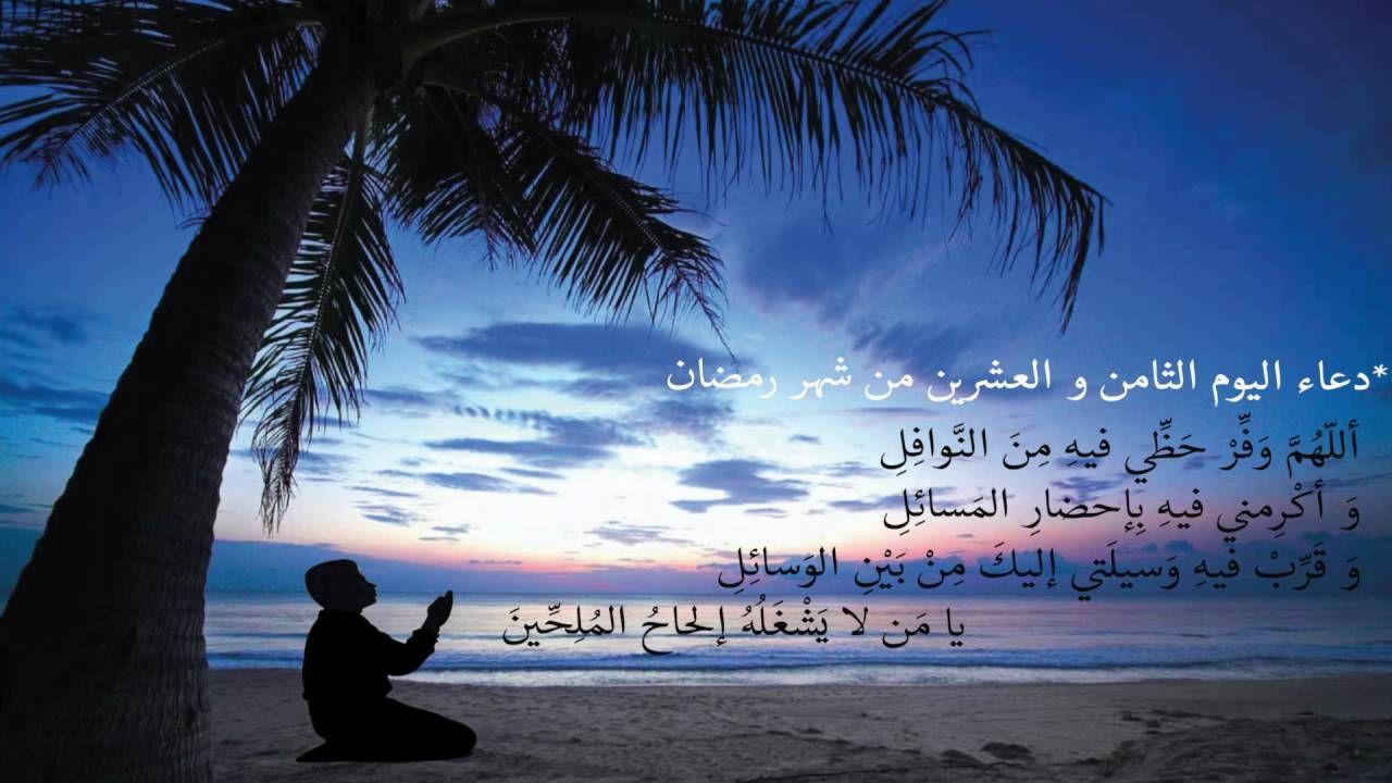 دعاء اليوم الثامن و العشرين من شهر رمضان قرآن كل يوم Beach Sunset Wallpaper Tree Sunset Wallpaper Palm Tree Sunset
