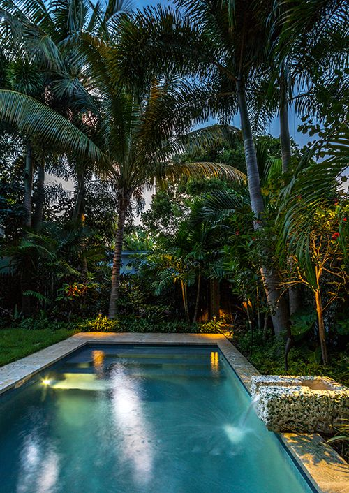 Landscape Lighting, Outdoor Lighting, Outdoor Living, Low Voltage Lighting,  Tropical Garden,