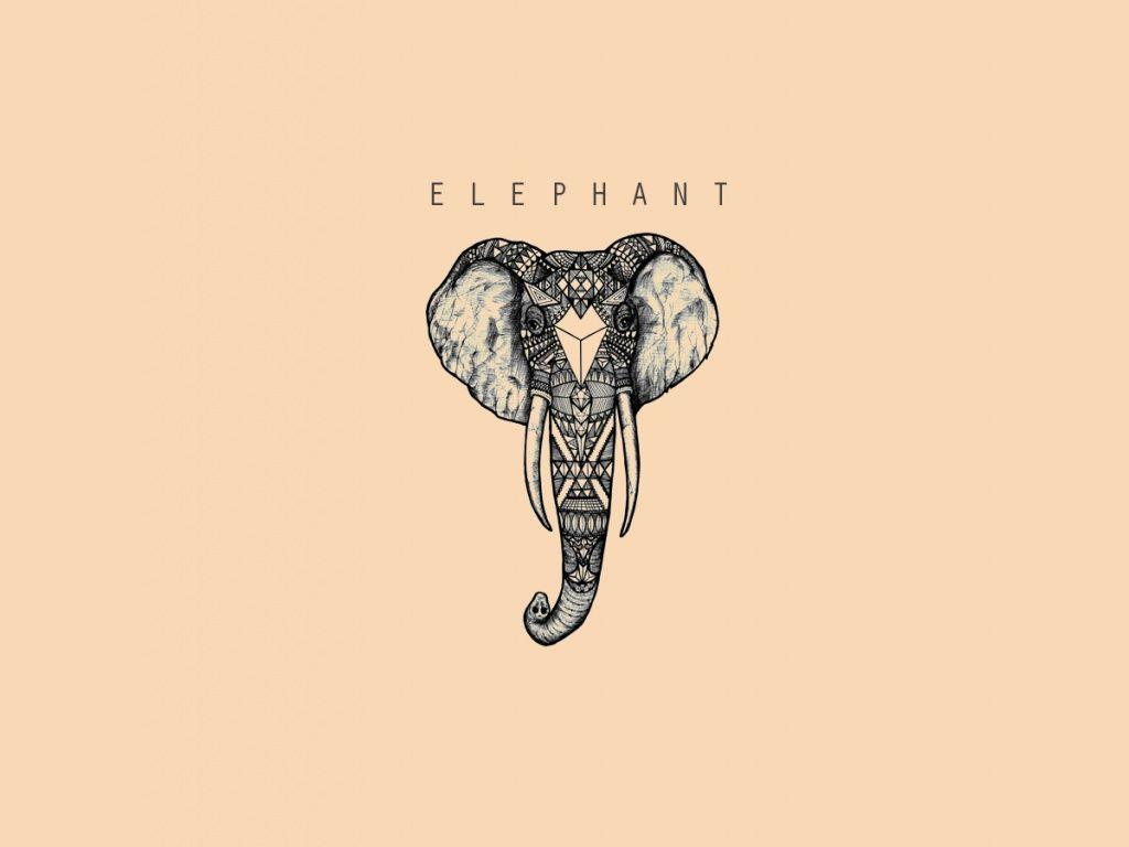 Elephant Wallpapers Elephant Wallpaper Elephant Mac Wallpaper