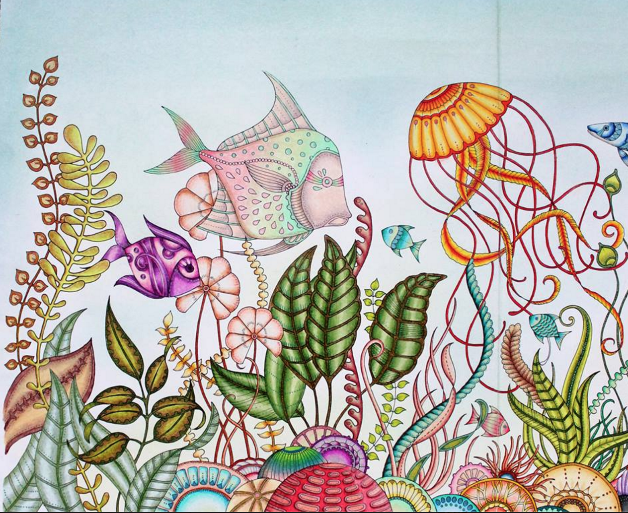 Johanna Basford | Emily Laughlin | Coloring Book Johanna Basford ...