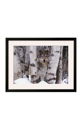 Art.com  Mountain Ranger Framed Art Print - Online Only