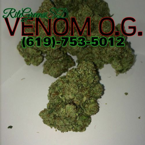 This strain is truly medicinal, and will alleviate any muscle/joint pain and clear up any anxiety in a single puff. If you're trying to take a day off and relax, make sure you have some #VENOMOG to accompany you! Call now! (619)-753-5012 #prop215 #patientsonly #notforsale #indica #OG #potent #highTHC #619 #760 #858 #sandiego #delivery #flower #topshelflife #deliveryonly #callnow #budtenders #somegirlsgethigh #BongBeauties #cannabiscommunity #420