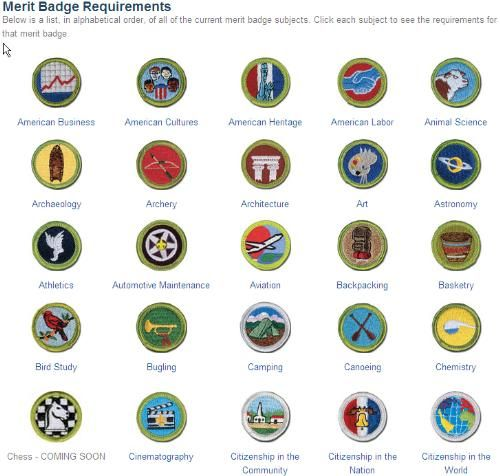 Pin On Bsa Merit Badges