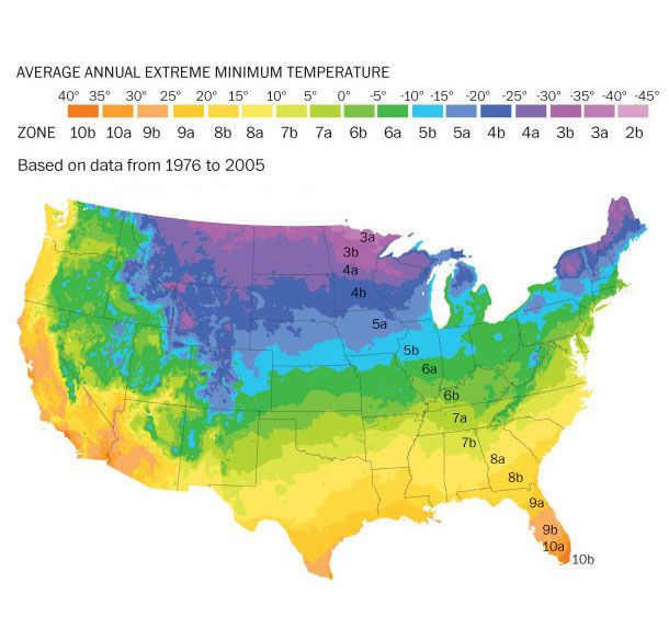 Plant Hardiness Zone Map, Medicinal