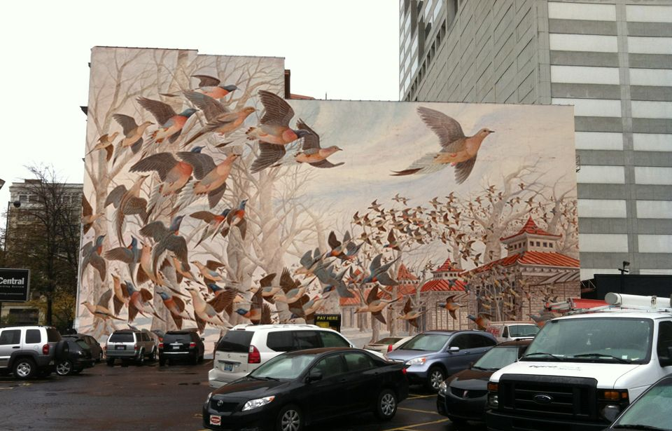 Do you know about Project Passenger Pigeon (P3)?  It is an international effort to mark the 100th anniversary of the passenger pigeon's extinction in 2014. Friends of Ryerson Woods is a P3 partner....