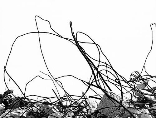 Mario Giacomelli. Learn Fine Art Photography - https://www.udemy.com/fine-art-photography/?couponCode=Pinterest10