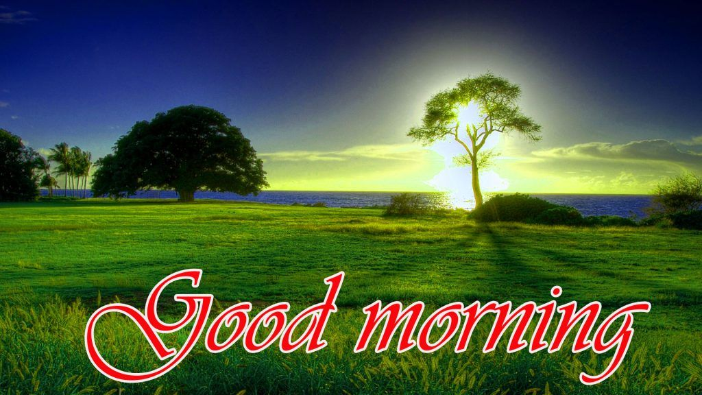 326 Beautiful Sceneries Nature With Good Morning Images Pics Hd Morning Pictures Good Morning Images Beautiful Scenery Nature