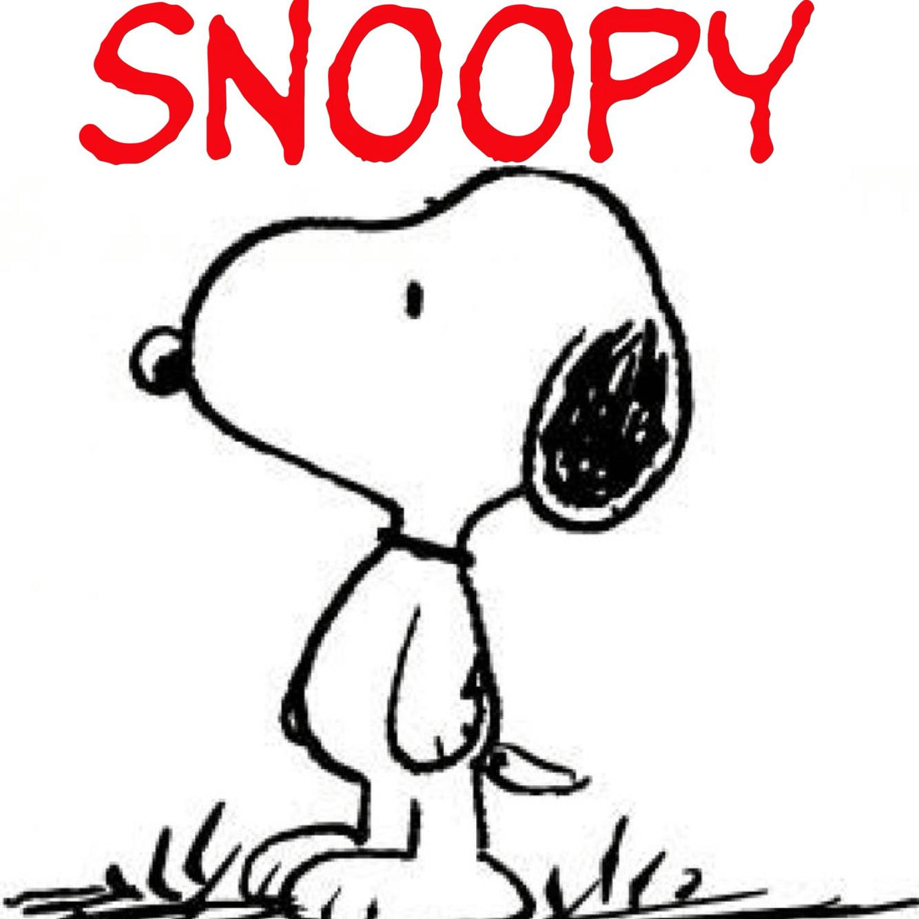 1950, Snoopy, Charles M. Schulz, Minneapolis, Minnesota, US #Snoopy ...