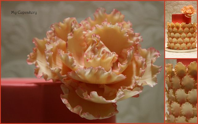 Tangerine and rose peonie cake | Flickr - Photo Sharing!