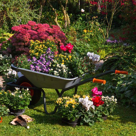 33 Wheelbarrow Planter Ideas For Your Garden Wheelbarrow Planter