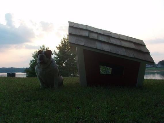 Modern Dog House Plans The Cape Dog House