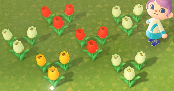 Check out how to get breed all Tulip colors in Animal