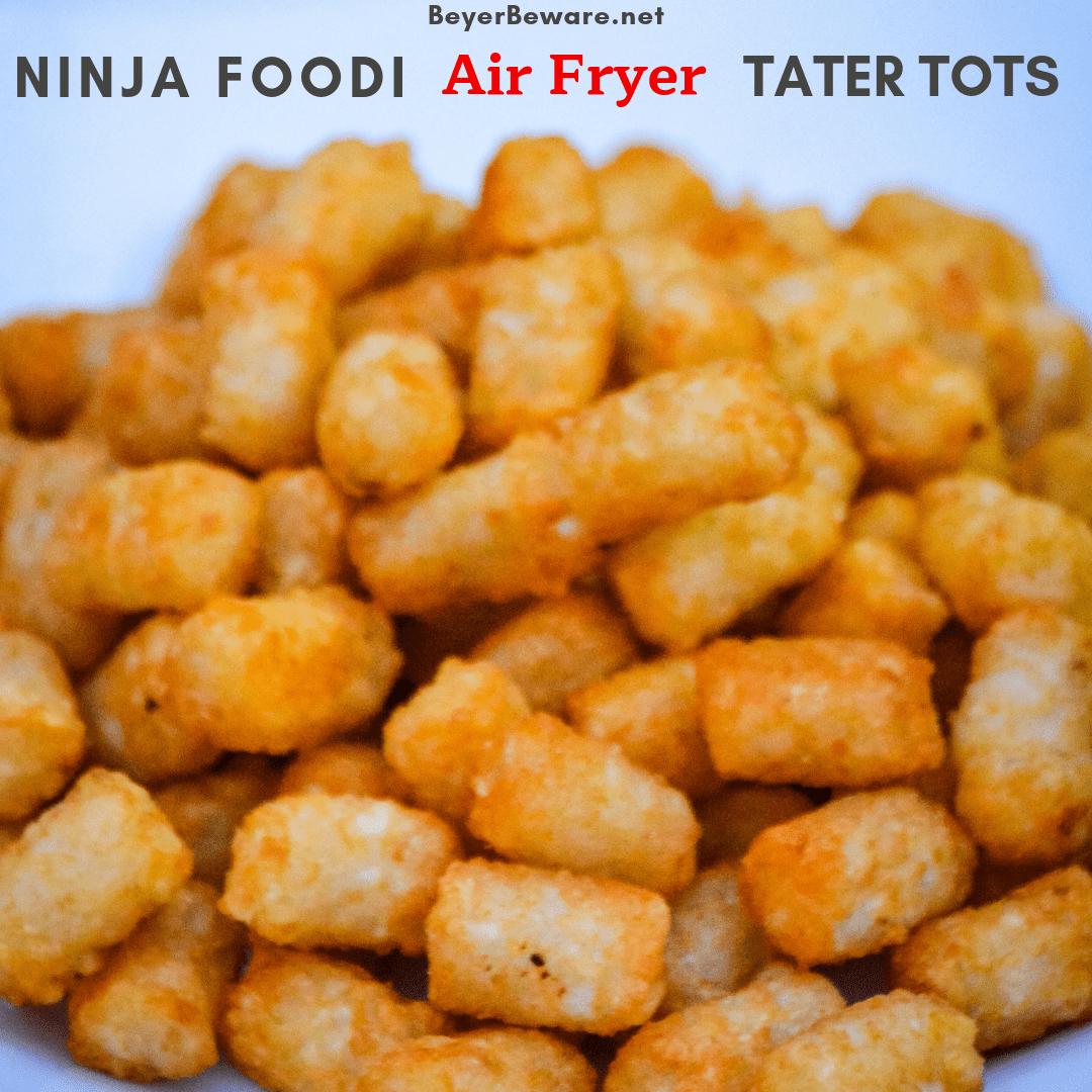 Ninja Foodi Air Fryer Tater Tots Beyer Beware Tater