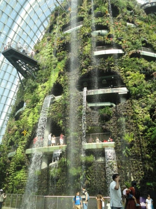 Gardens By The Bay Indoor Waterfall Gardens By The Bay African