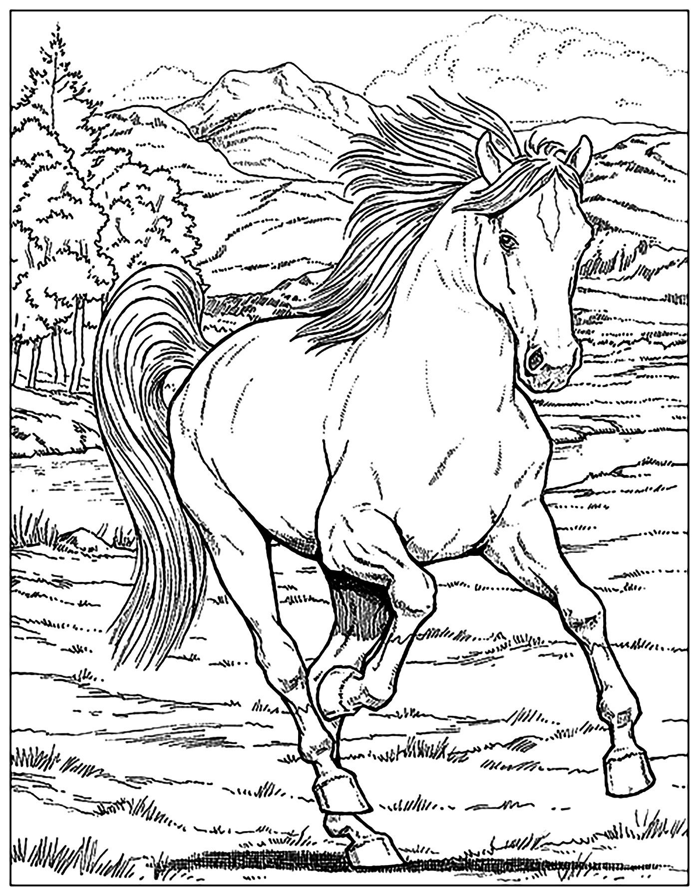 Horse A Galloping Horse From The Gallery Horses Just Color Discover All Our Printable C Horse Coloring Books Horse Coloring Pages Animal Coloring Pages [ 1794 x 1400 Pixel ]