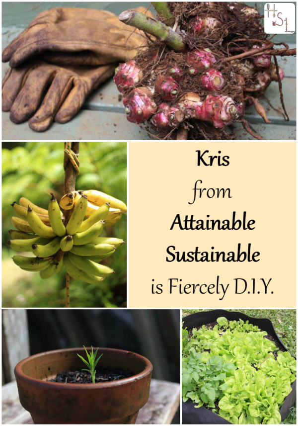 Come be inspired by what Kris from Attainable Sustainable does and doesn't do in her Fiercely DIY life.