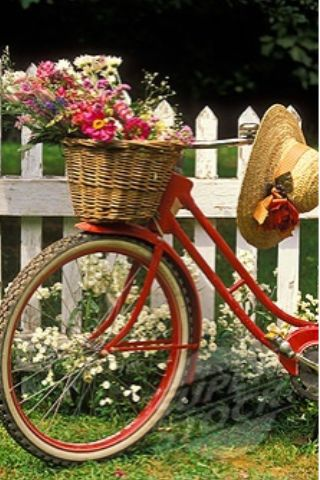Red bike with basket of flowers