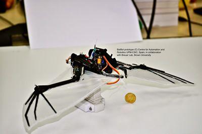 Bio Robotics Ieee Robotics And Automation Society Robotica