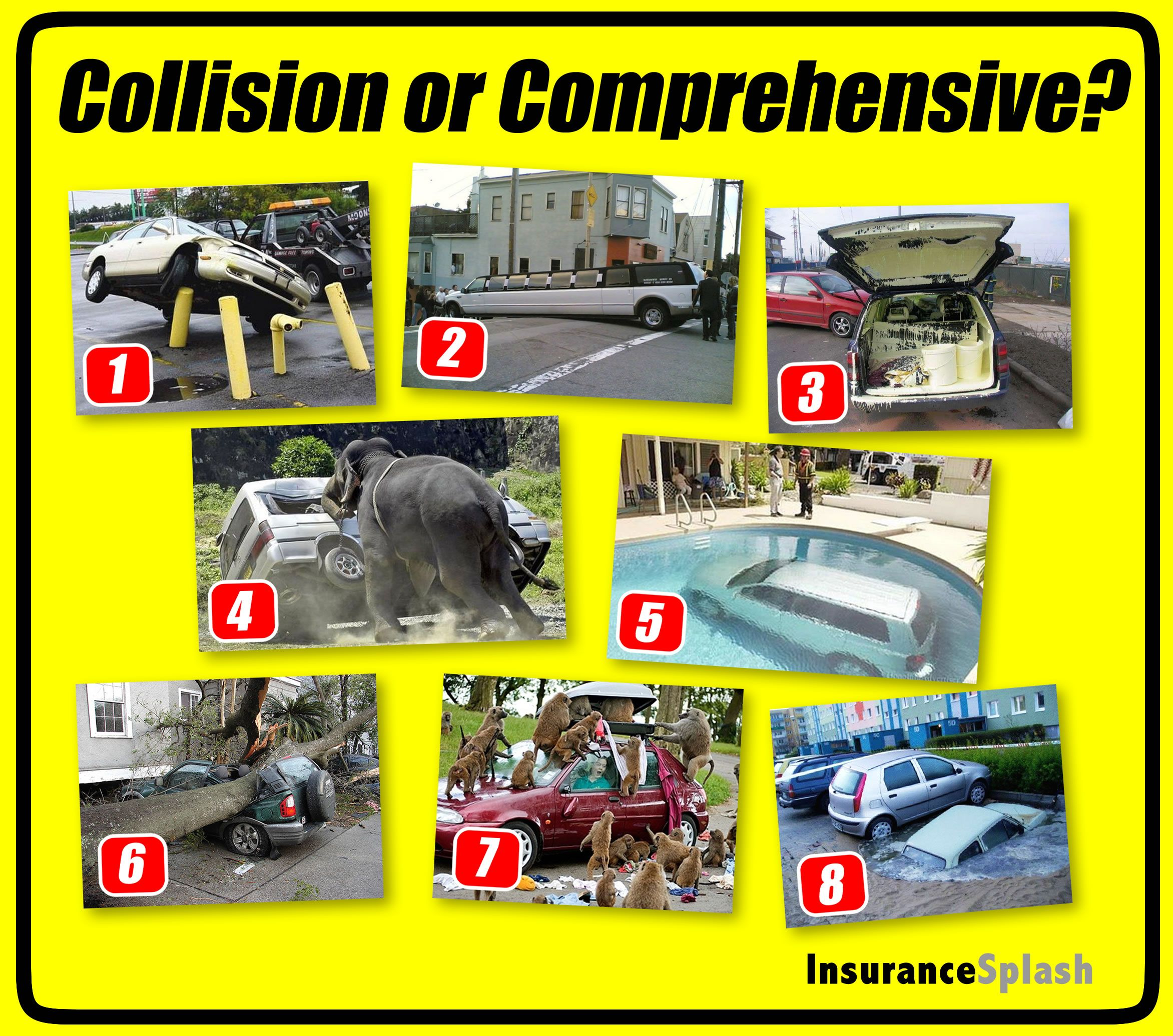 Collision Or Comprehensive Insurance Coverage You Make The Call