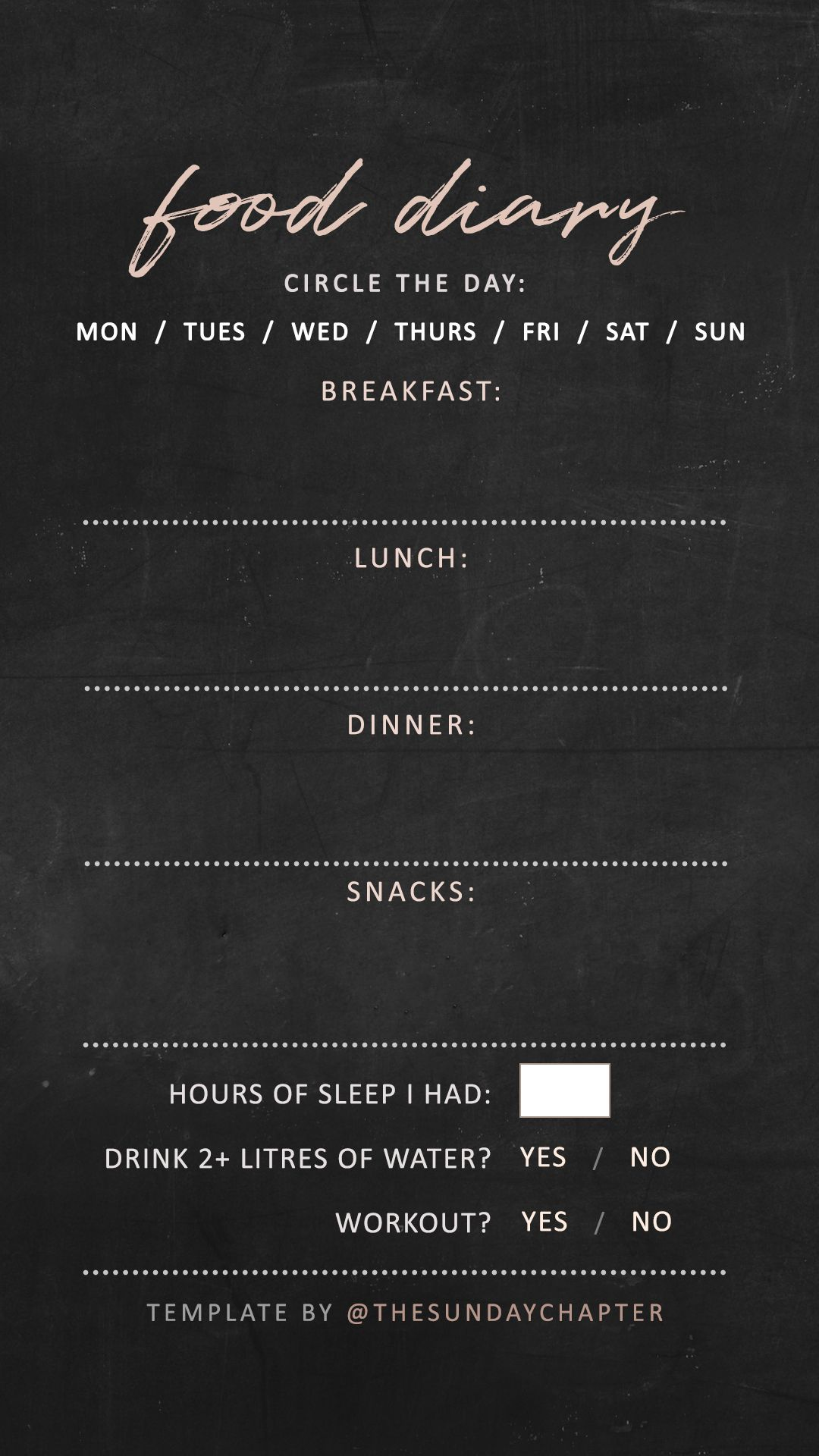 food diary instagram story template templates pinterest food