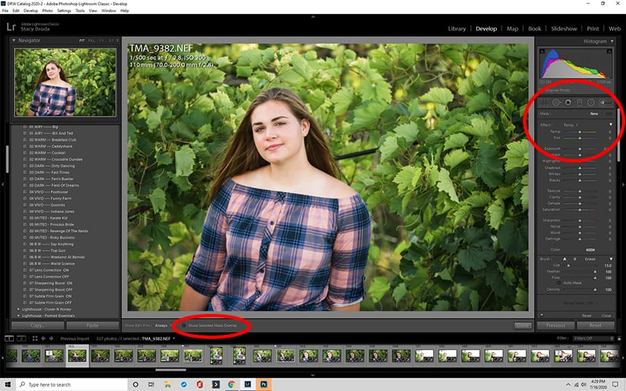 How To Blur Background In Lightroom Blur Background In Lightroom Blurred Background Lightroom