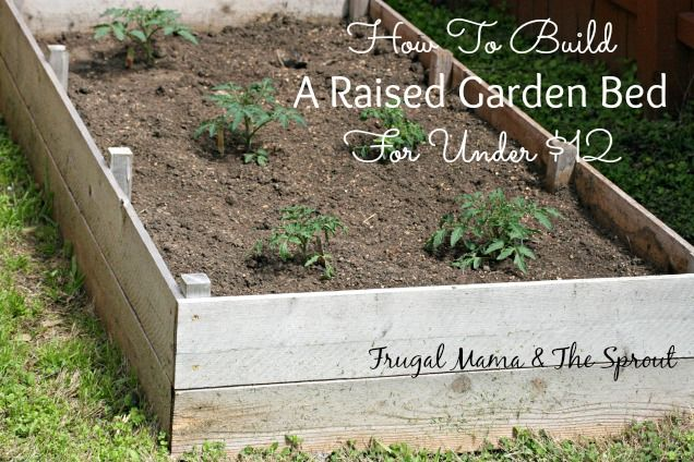 Super cheap and easy raised garden bed DIY that you can have done