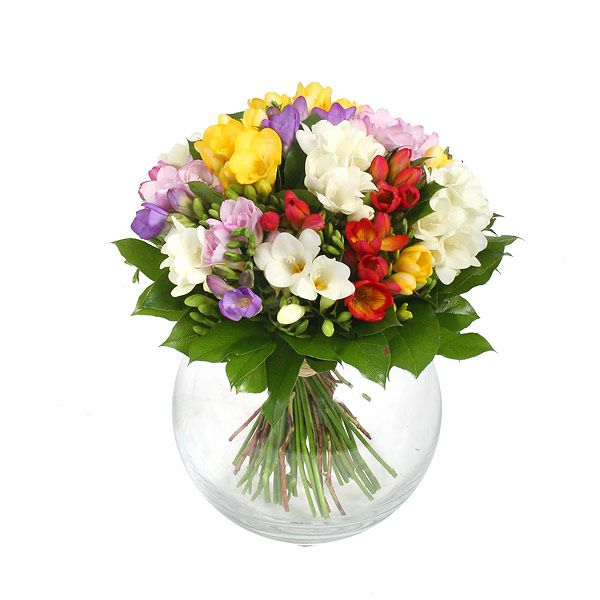 Freesia Bouquet Love Flowers Flowers Flower Delivery