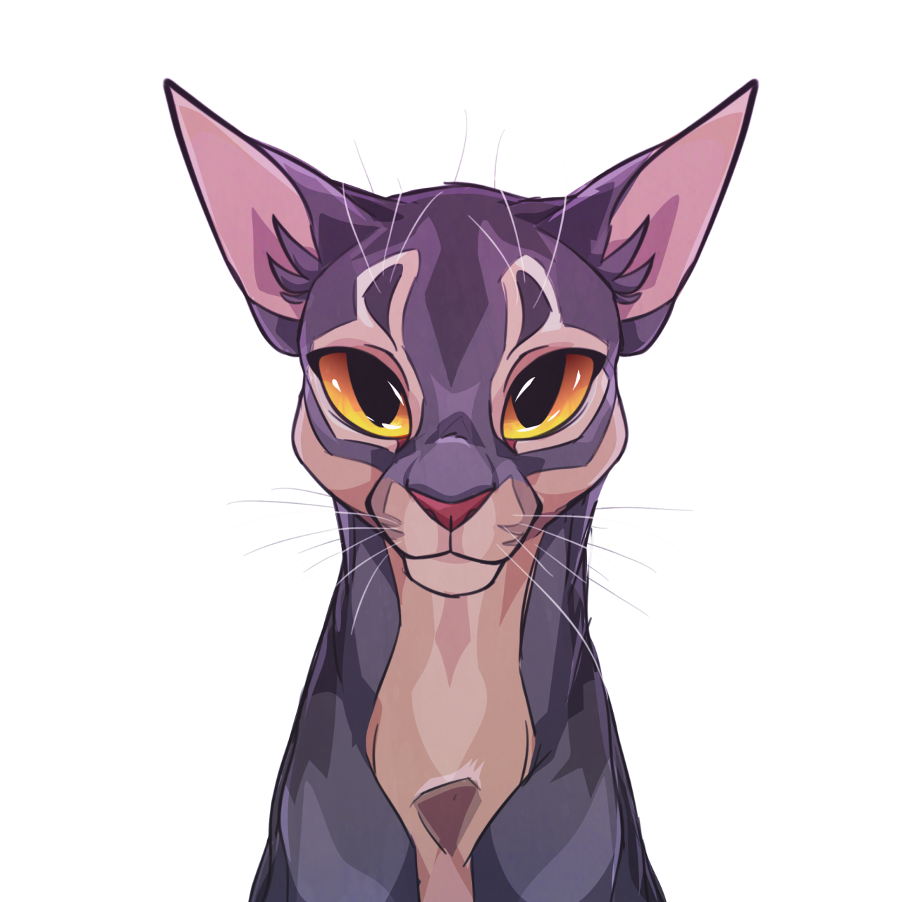 art blog (mostly cats) Cats illustration, Warrior cats