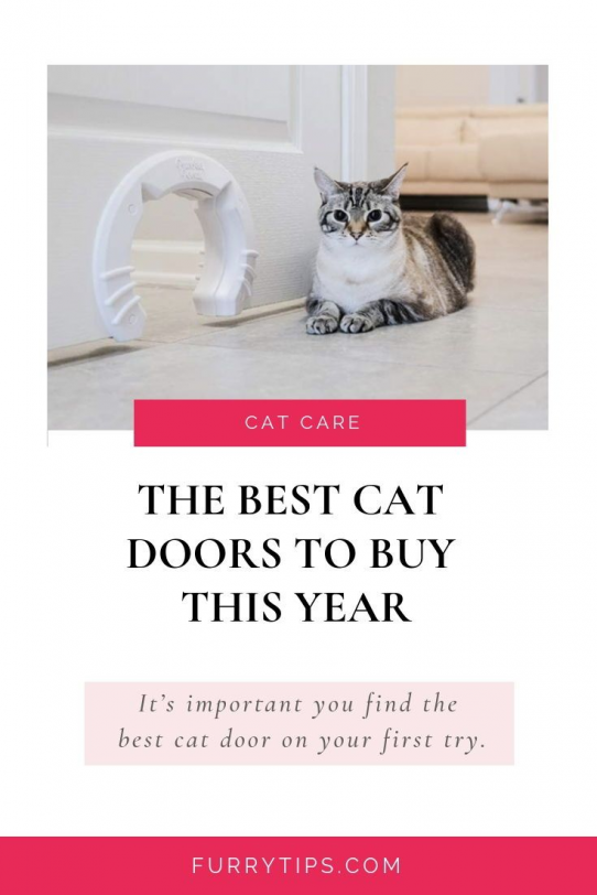 Once a cat door has been installed it can be a challenge to remove so its important you find the best cat door for you on your first try.For those who want to keep costs down there is theInterior Cat Door from Purrfect Portal.| Furry Tips | The Best Cat Doors To Buy This Year best cat door best door for cats Top cat doors Cat door reviews Window Pet Door Interior Cat Door | #Cat #Pet #Furry #CatDoor #PetDoor #BestCatDoor #CatDoorReview #FurryTips #pethealth #pet #health #cat